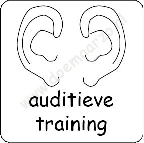 Auditieve training